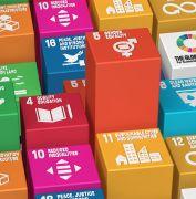 Women's Entrepreneurship and the SDGs