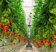 2 Meningkatkan Kualitas Pertanian dengan Ilmu Pengetahuan dan Teknologi