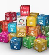 Snapshot of Gender Issues - SDGs 1-10