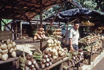 Risks of Microfinance